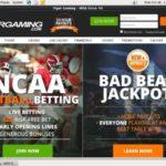 Tiger Gaming Advertisement