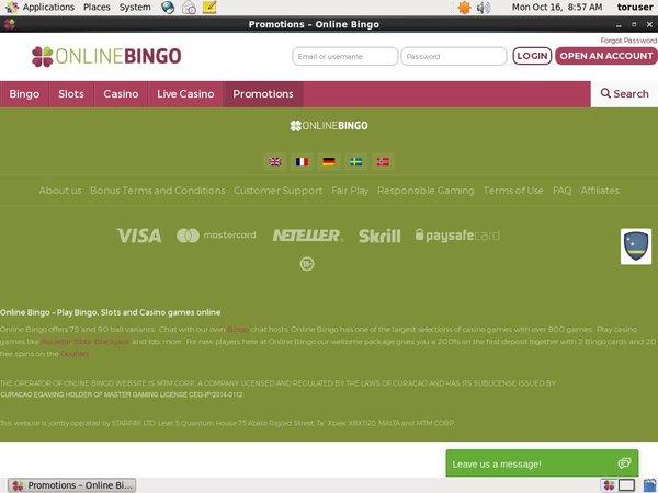 Online Bingo 獎金