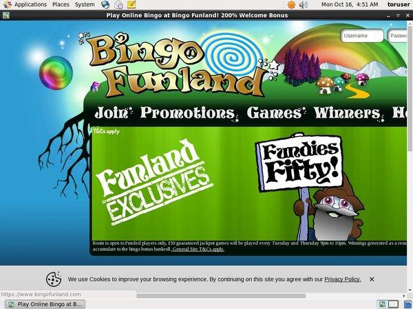 Bingo Funland Bonus Spin